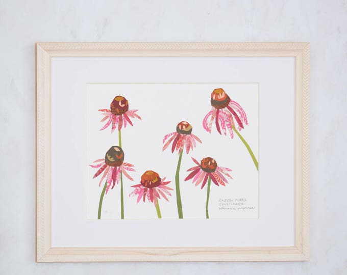 Art Print of Original Wildflower Collage- Eastern Purple Coneflower Wildflower