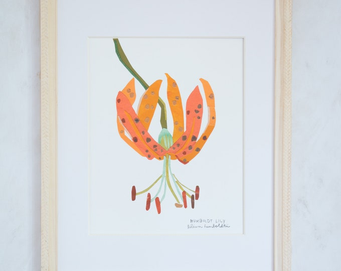 Art Print of Original Wildflower Collage- Humboldt Lily