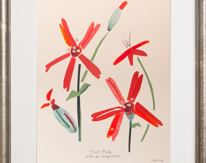 Art Print of Original Wildflower Collage-  Fire-pink Wildflower