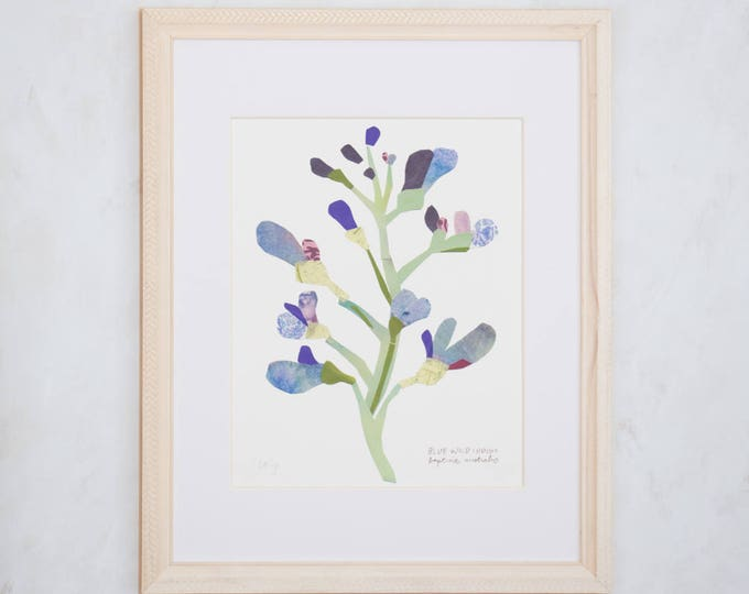 Art Print of Original Wildflower Collage- Blue Wild Indigo Wildflower