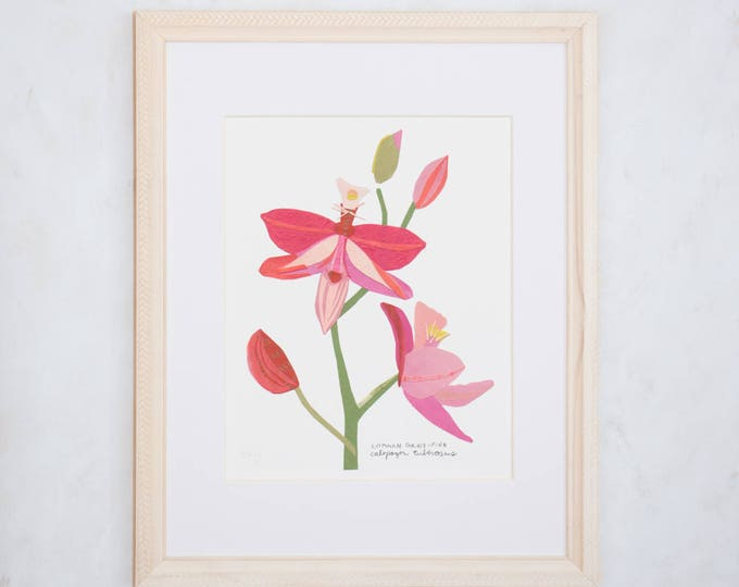 Art Print of Original Wildflower Collage- Common Grass-Pink