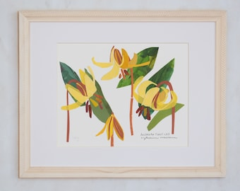 Art Print of Original Wildflower Collage- American Trout Lily