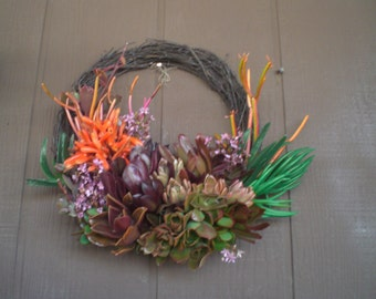 Fathers Day Color 11 inch Growing Succulent Plants Willow Branches Living Wreath Succulent Cuttings Succulent Clippings