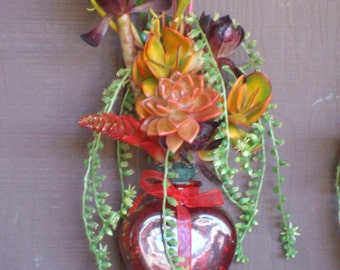 Summer Special Love* LIVING  Succulent Plants in a red heart vase succulent cuttings succulent starts succulent clippings