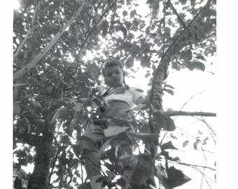 Digital Download, Girl Climbing Tree, Black & White Photo, Found Photo, Snapshot, Old Photo, Vernacular Photo, Printable Photo√