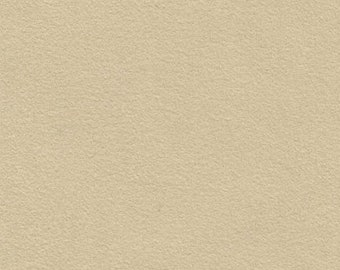 Tools & Supplies-Ultrasuede ® ST Soft-Small 2 1/2 x 12 Inches-Sand-Quantity 1