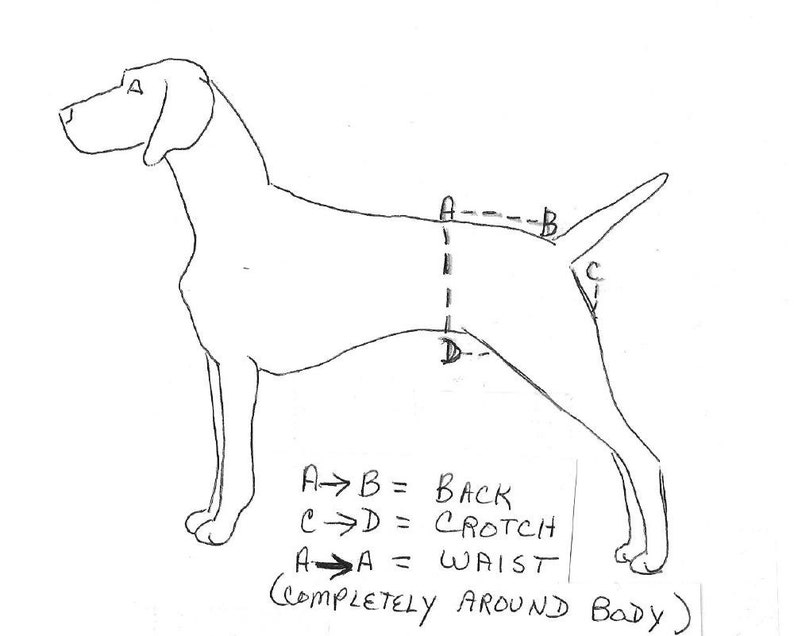 Dog Body Harness With Velcro