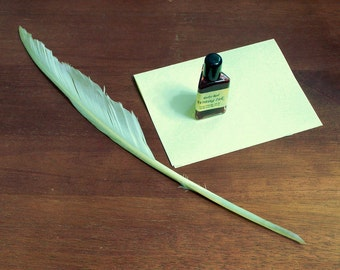 Hand-Cut  Goose Feather Quill for Calligraphy and Medieval Writing