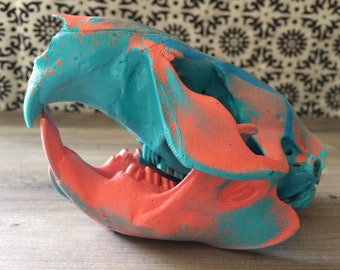 Painted Animal Bones - LARGE Beaver Skull