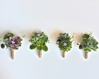 Double Succulent Boutonniere Sets