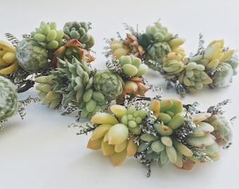 Succulent Bracelet // Succulent Corsage