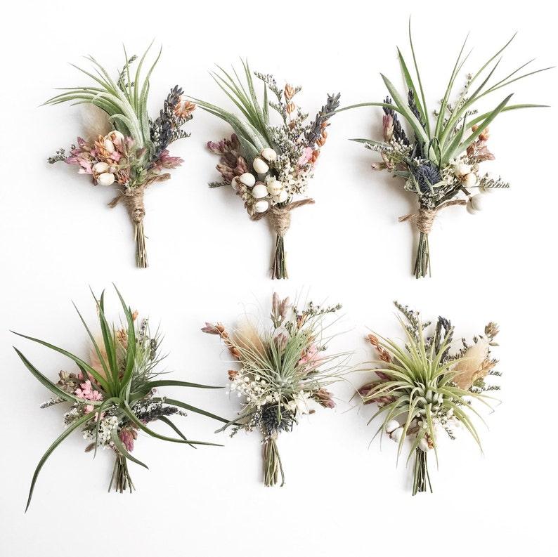 Air Plant Wildflower Boutonnieres // Tillandsia boutonnieres image 0