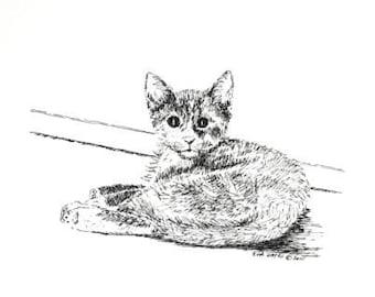 """Kitten Pen and Ink  Drawing, Wall Decor 6""""x5"""" Cat Pet Portrait, Feline Animal Art Drawing, Black White Nursery Art, Kitty Drawing"""