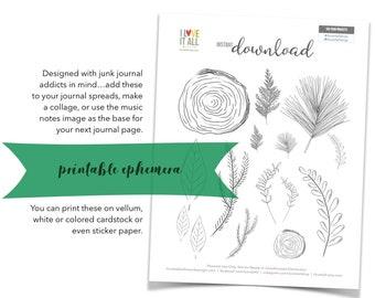Nature Ephemera, Pine Boughs, Leaves, Tree Branches, Wood, Wood Stumps, Junk Journal Supply, Mini Book, Printable Ephemera, Evergreen Branch