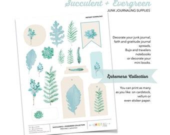Succulents Crafting Ephemera, Printable Succulent and Evergreen Art, Printable Stickers, Printable Junk Journaling Supplies, Cactus Cacti