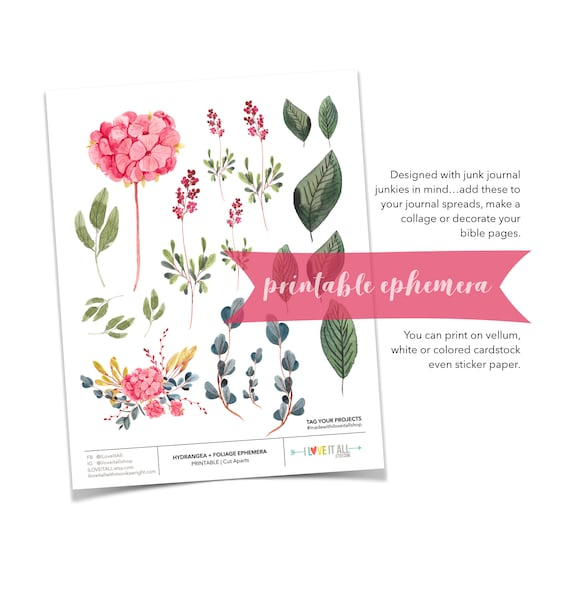 Pink Hydrangea, Floral Ephemera, Planner Download, Nature Ephemera, Green Leaves, Pink Floral Prints, Junk Journal Supply, Printable Foliage