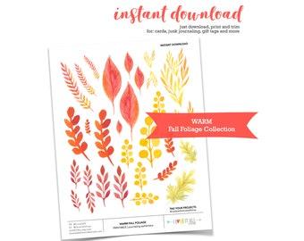 Fall Foliage Leaf Collection, Printable Fall Ephemera, Junk Journaling Supplies, Fall Leaves Printable, Junk Journaling Printable Ephemera