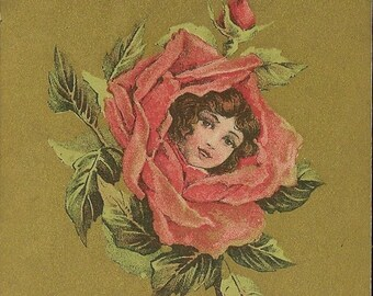 Girl's Face in Rose Bloom Antique Postcard Lavish Gold Background 1909