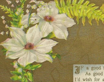 Antique Postcard Friendship Greeting 1910 – Good Fairy Wishes – White Flowers and Ferns