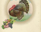 Cheerful Vintage Thanksgiving Postcard Friendship Greeting Large Turkey Gobble and Cluster of Fall Fruit – Unused Postcard