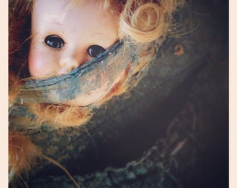 6x6 Signed Archival Matte Photograph of a Baby Doll Head in Tattered Suitcase in Abandoned House Creepy Weird Art Halloween Party Prop Decor