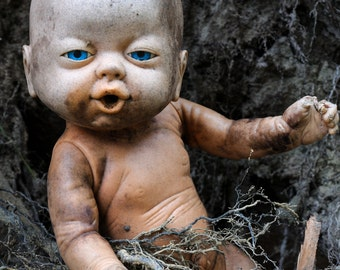 8x10 Signed Archival Photographic Print of a Creepy Baby Doll with Wet Mouth Stuck in a Nest Pile of Branches and Sticks