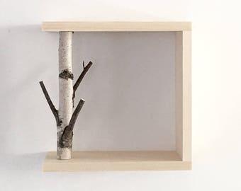 Forêt de bouleaux blanc Art/étagère murale - 12 x 12, étagère en merisier, plateau en bois, encadré merisier art, floating tablettes, étagères, boîte d'ombre