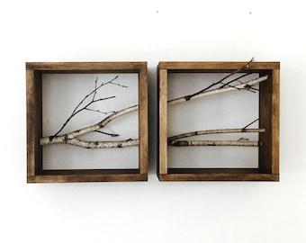 forêt de bouleau blanc wall art/étagère-lot de 2 (horizontal), branche de bouleau, encadré merisier art, floating tablettes, afficher des étagères, boîte d'ombre