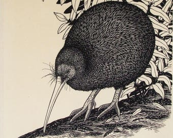 Tokoeka, Brown Kiwi tea towel
