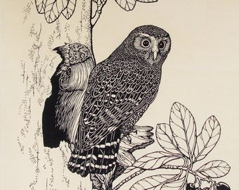 Ruru, Morepork tea towel