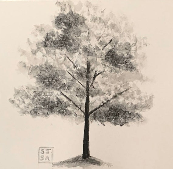 Young Oak: B/W PrInt of Original Ink Wash Drawing