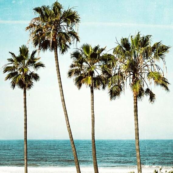 Palm Tree Beach: Palm Tree Photography Ocean Landscape California Beach Art