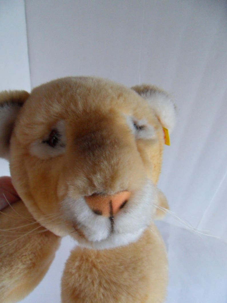 83f2f0e4aadbf Steiff puma mountain lion cougar cat all IDs made in Germany 418