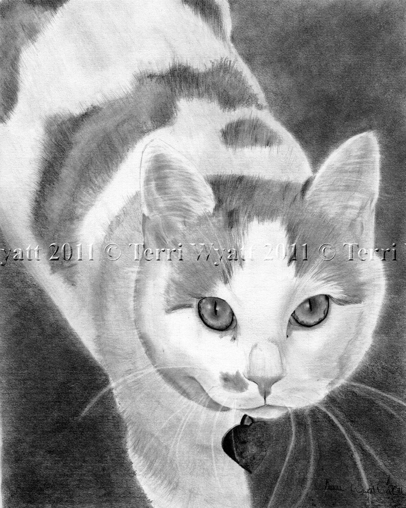 Custom Pet Portrait From Your Photo Original Dog Cat Pencil Sketch Art Drawing From Picture