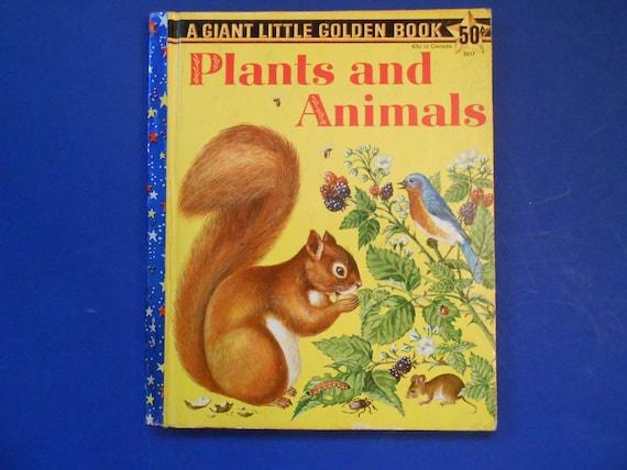 Plantes Et Des Animaux Un Livre D Or Petit Geant Vintage