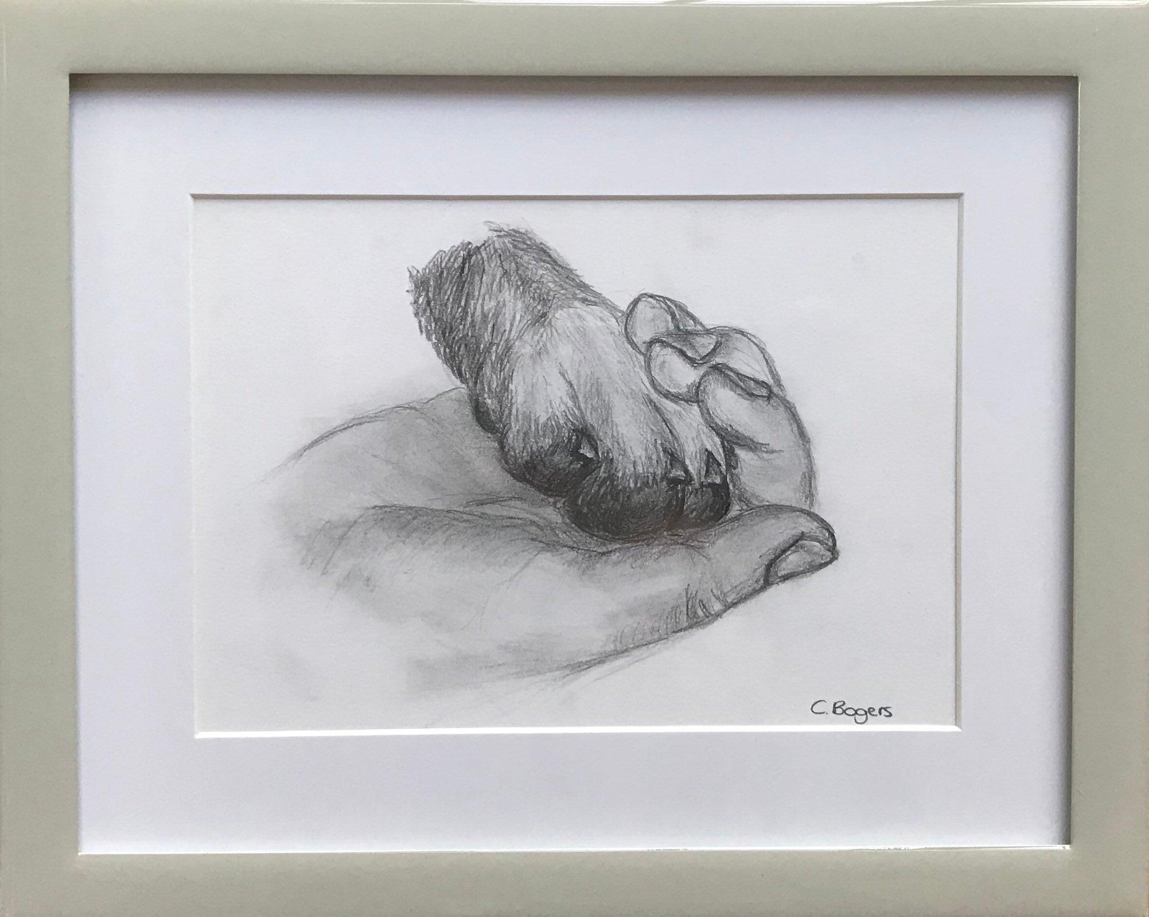 Mans best friend original framed pencil drawing