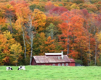 The Hidden Vermont Sugarhouse Print