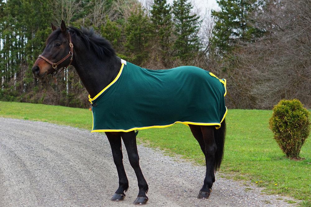 Custom Horse Blanket Fleece Light Blanket Choose your size ...
