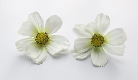 1 pair white cosmos flower hair clip 250 inches 650 cm etsy image 0 mightylinksfo