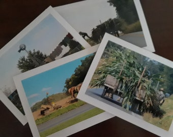 Photo Note Card of Amish/Countryside