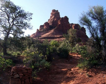 Path To Bell Rock Greeting Card
