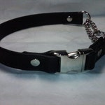 CUSTOM FOR ANYA - Leather Martingale Dog Collar with Side Release Snap Buckle and Matching Leash