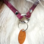 Leather Dog Necklace