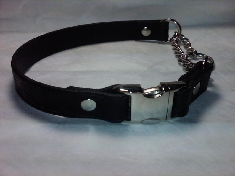 Leather Martingale Dog Collar with Side Release Snap Buckle image 0