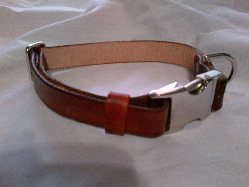 Adjustable Leather Dog Collar with Side Release Buckle  Large image 0
