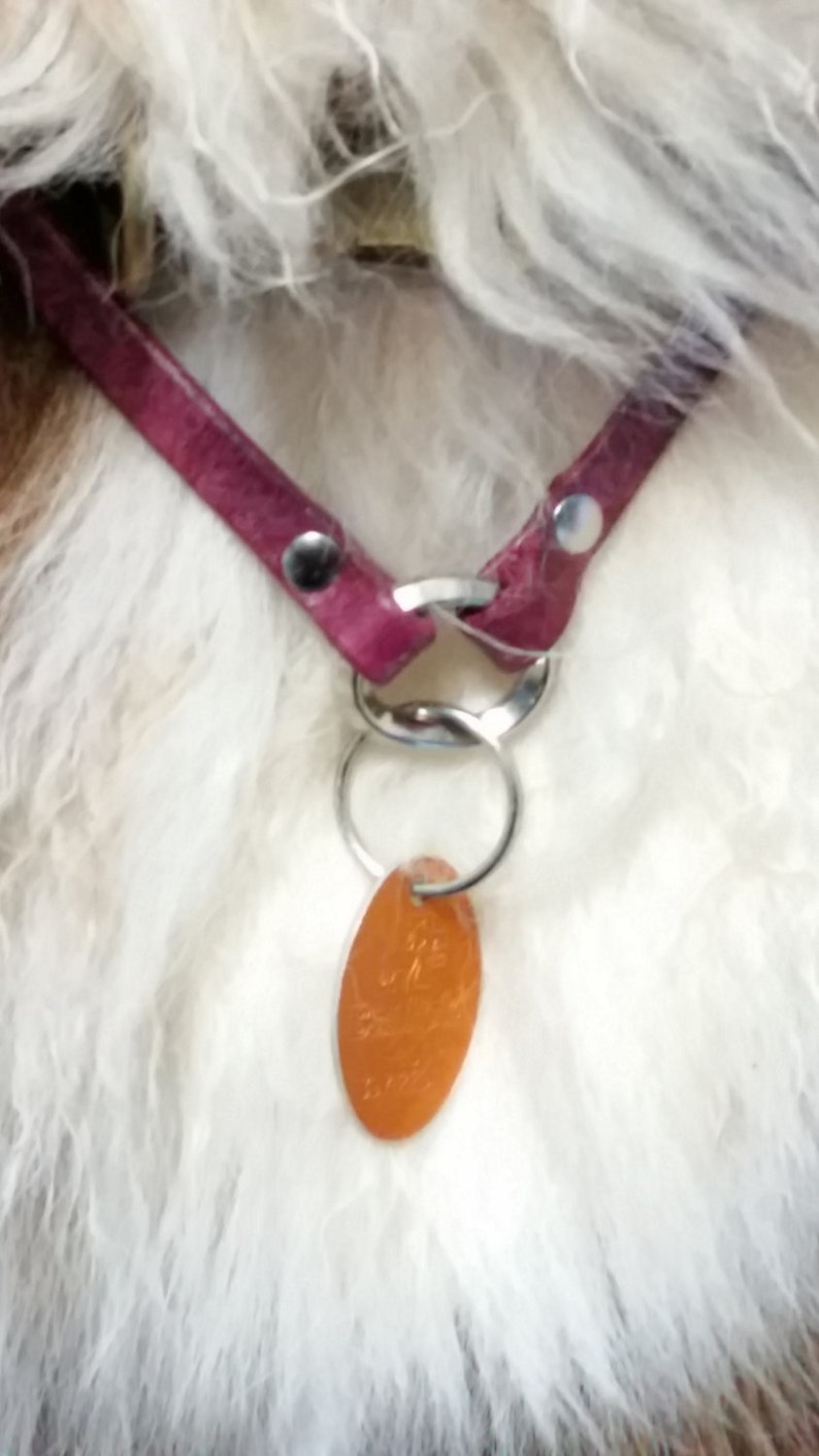 Leather Dog Necklace image 0