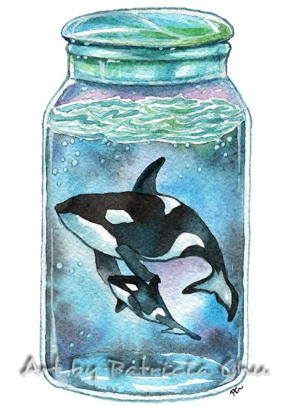 Dolphin And Orchids  ocean animal art from original painting by Patricia Chu 2.5 x 3.5 inches ACEO limited edition art print