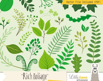 Botanical Clipart, Greenery Vector Clip Art, Eucalyptus Leaves, Ferns, Foliage Clip Art, Floral Clipart, Vines, Commercial Use
