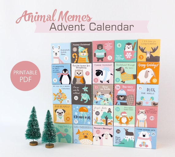 Advent Calendar for Kids Funny Animal Memes Christmas Themed