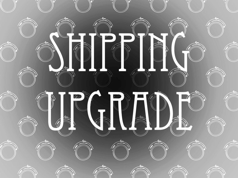 SHIPPING UPGRADE   3 to 10 days express international image 0